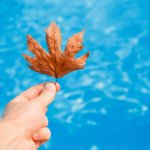 Winter pool closing tips from Cannonball Pools in Milton