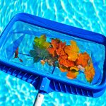 Pool skimmer with leaves | Pool Closing Time - How To Make It Easy